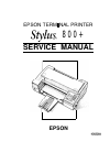 Epson Stylus Color 800 Printer Manual (101 pages)